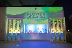 アクアパーク品川で演出強化されたプログラム「FLOWER AQUARIUM by NAKED」を実施
