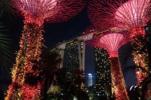 フォーミュラ1 シンガポールグランプリ〜上空からの撮影を想定した光の演出〜